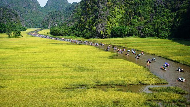 Thêm tân binh cho bóng chuyền nữ Việt Nam - ảnh 1