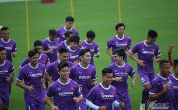 V-League hoãn vô thời hạn, tuyển Việt Nam hội quân sớm